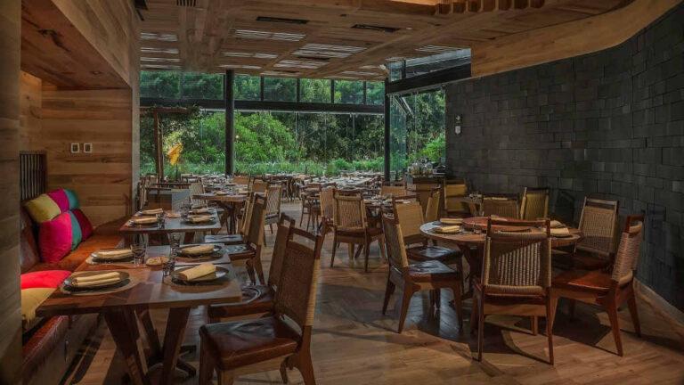 Sinergia entre los restaurantes el Chapulín y Nom