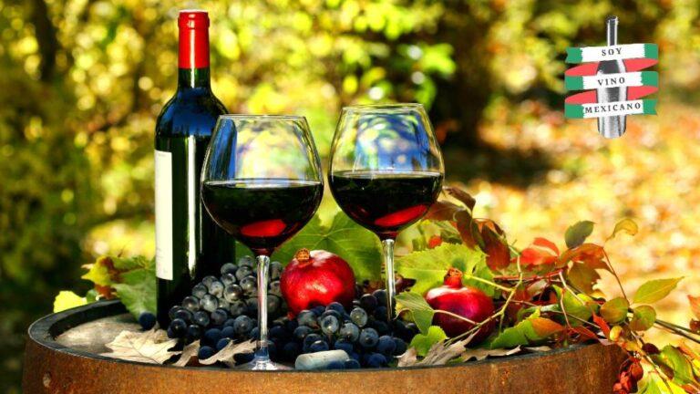 10 vinos mexicanos que tienes que probar este 2021