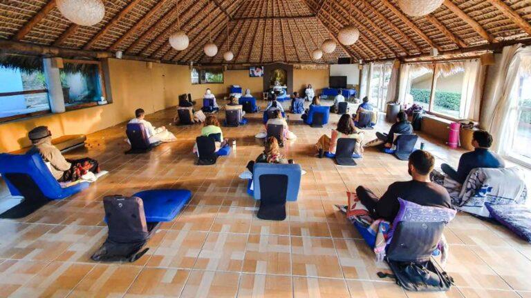 ¿Quieres meditar de forma online? Conoce Prem Dayal, aquí la respuesta