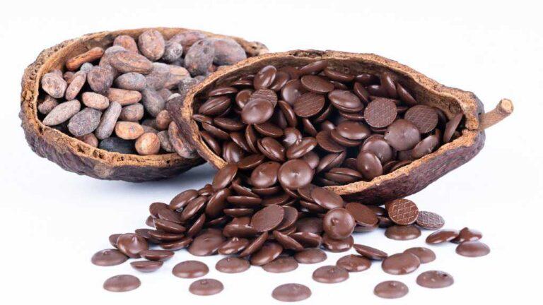 SICAO Selecto, el nuevo chocolate gourmet hecho con cacao 100% mexicano